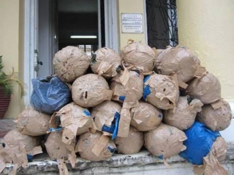 Κέρκυρα: Εντοπίστηκε μεγάλη ποσότητα χασίς
