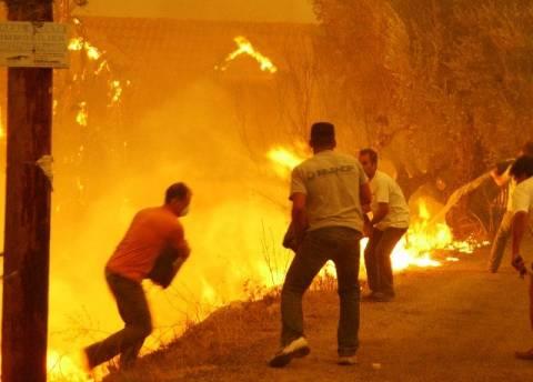 Ηλεία: Ξεκινά σήμερα η δίκη για τις καταστροφικές πυρκαγιές του 2007