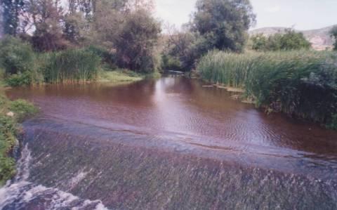 Εθελοντικός καθαρισμός στον Γαλλικό ποταμό