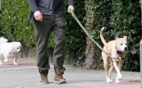 Δήμαρχος προσλαμβάνει ντετέκτιβ για τα... περιττώματα σκύλων!