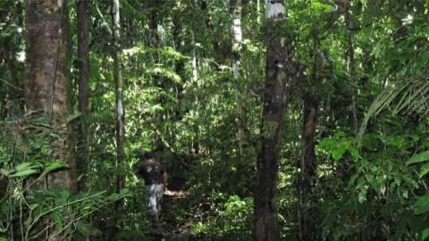 Ισημερινός: Ιθαγενείς σκότωσαν εργαζόμενο ανθρωπιστικής βοήθειας