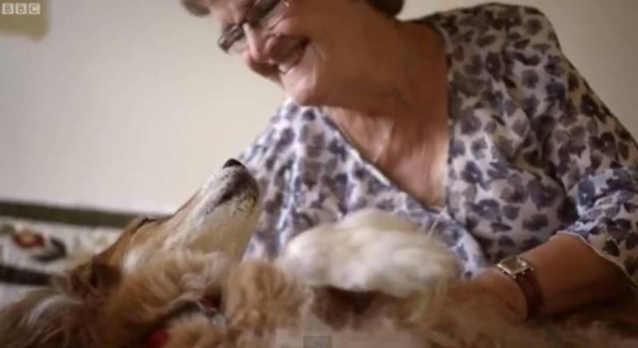 Βρετανία: Σκύλος την έσωσε από τον καρκίνο (video)