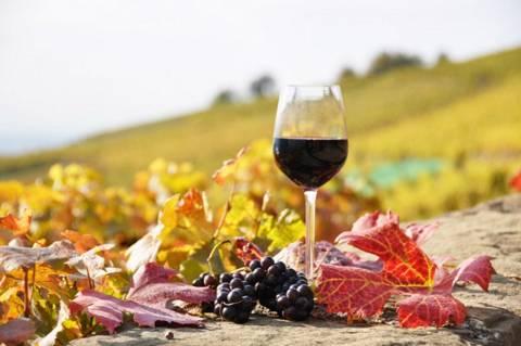 Οι Κινέζοι δοκιμάζουν τα Κρητικά κρασιά