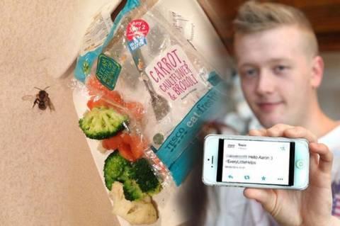 Βρήκε έντομο σε λαχανικά και του απάντησαν ότι… ! (photos)