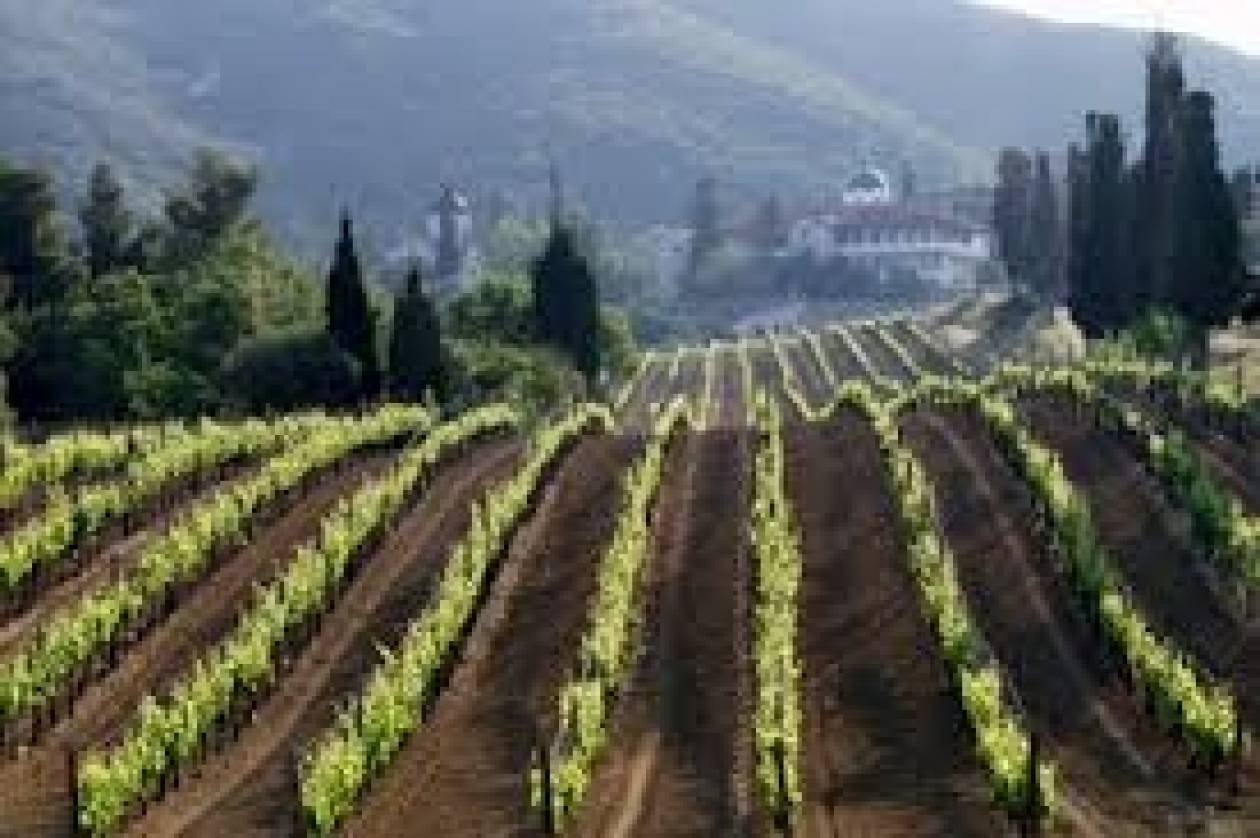 Βραβείο για τους «Δρόμους του Κρασιού της Βορείου Ελλάδος»