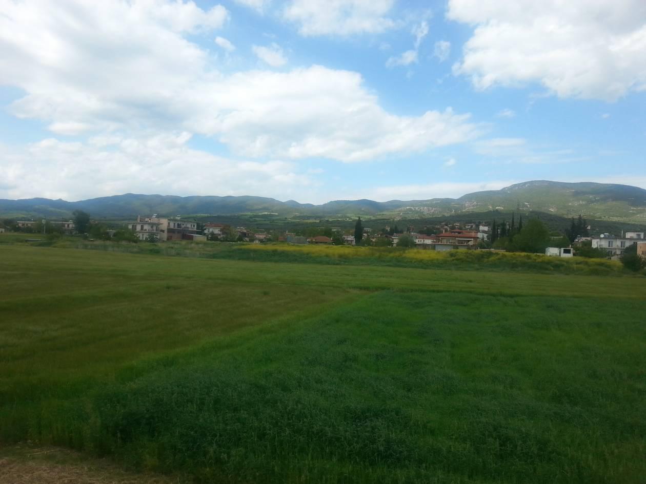 Γνωρίστε την Ελάτεια: Μία γραφική κωμόπολη στην καρδιά της Φθιώτιδας!