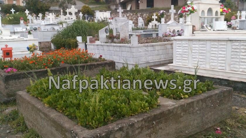 Έφτιαξαν «μποστάνι» μέσα στο... νεκροταφείο (pics)