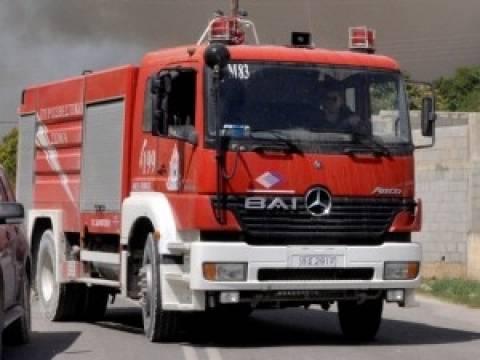 Φωτιά σε μαντρί - Ζώα κάηκαν ζωντανά