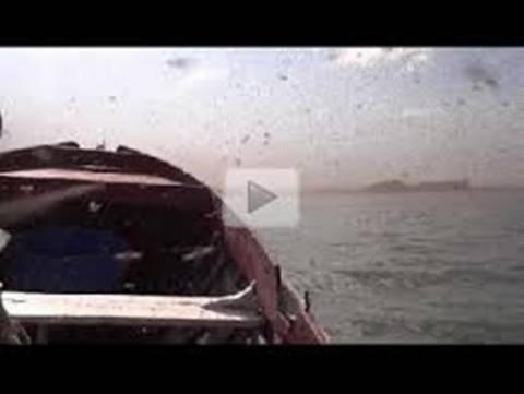 Ισλανδία: Δέχθηκαν επίθεση από σκνίπες! (video)