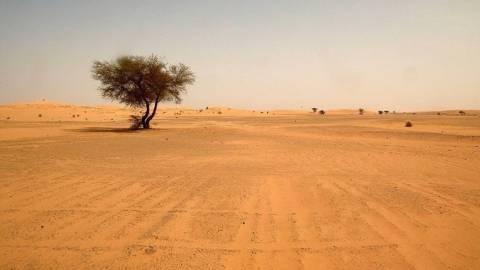 Νίγηρας: Αγνοούνται μετανάστες που εγκαταλείφθηκαν στη Σαχάρα