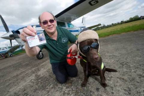 Ο πρώτος σκύλος με άδεια συγκυβερνήτη αεροπλάνου! (photos)