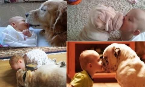 Αυτά είναι τα πιο τρυφερά φιλιά! (εικόνες)