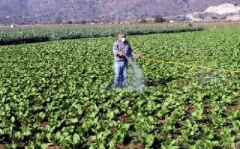 Καβάλα: Συνάντηση εργασίας στη ΔΟΥ για έλεγχο αιτήσεων επιστροφής ΦΠΑ αγροτών