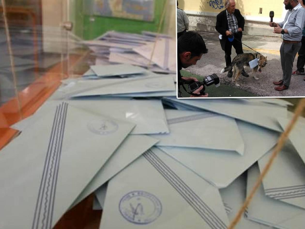 Εκλογές 2014: Τα ευτράπελα των εκλογών