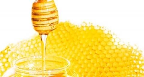 Προγράμματα 4 εκατ. ευρώ για τη στήριξη της μελισσοκομίας