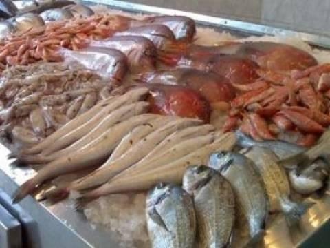 Μηχανιώνα: Κατάσχεση αλιευμάτων στην ιχθυόσκαλα