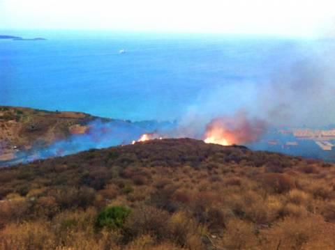 Πυρκαγιά σε χορτολιβαδική έκταση στην Ανάφη