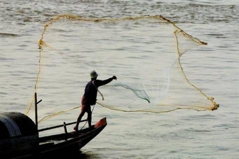 Απίστευτη ψαριά στην Τήνο... (pics)