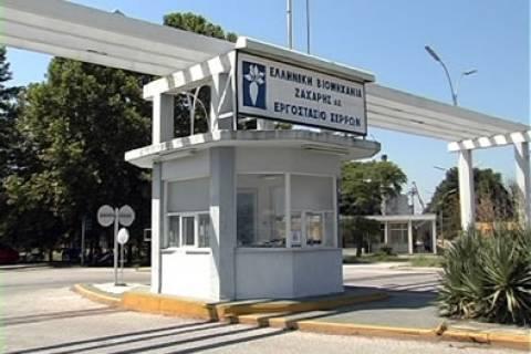 ΕΒΖ: Αμερικανοί και Σέρβοι ήθελαν να κλείσουν το εργοστάσιο ζαχάρεως στις Σέρρες
