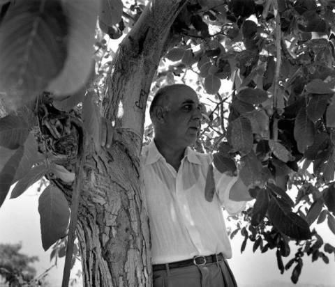 Έκθεση: «Οι φωτογραφίες του Γιώργου Σεφέρη» στο Παλέρμο