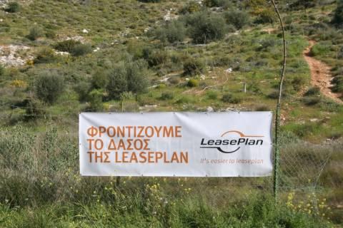 H LeasePLan Hellas για 2η συνεχή χρονιά «έδωσε ζωή» στο Αισθητικό Δάσος του Υμηττού