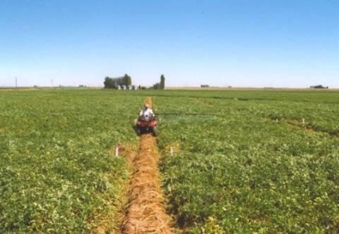Παραγωγοί: Οι Έλληνες δεν καταδέχονται να δουλέψουν στα χωράφια