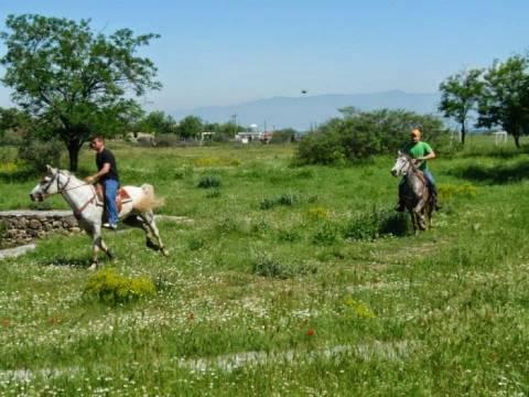 Χαλκιδική: Τρίτη ιππική συνάντηση στην Αρναία
