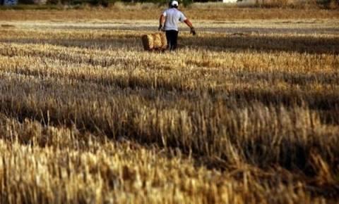 Πάνω από 8.500 αιτήσεις για το Πρόγραμμα Νέων Αγροτών