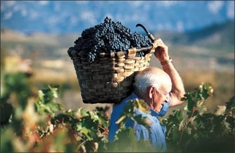 Σε Καναδά και Κίνα τα κρασιά της Κεφαλονιάς