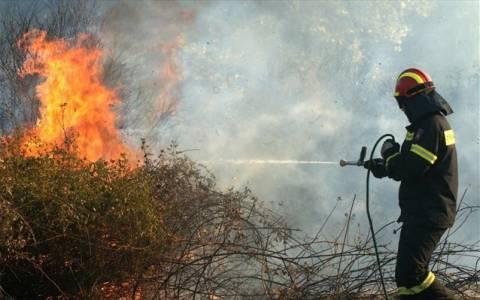 Δεν κινδυνεύουν κατοικημένες περιοχές από την πυρκαγιά στον Αρμενιστή