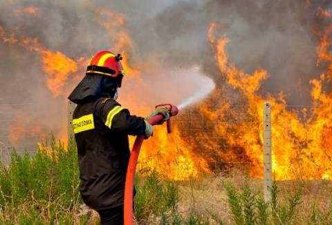 Μαίνεται η πυρκαγιά στη Σιθωνία