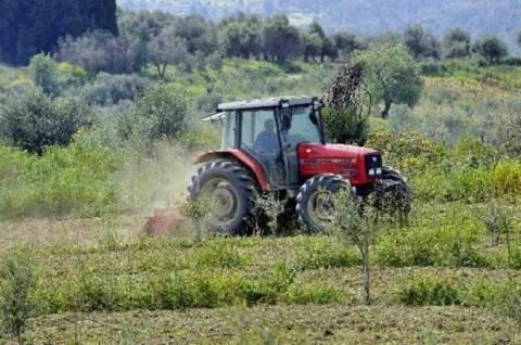 ΕΛΓΑ: Πρόγραμμα 5 εκατ. ευρώ για την προστασία των καλλιεργειών
