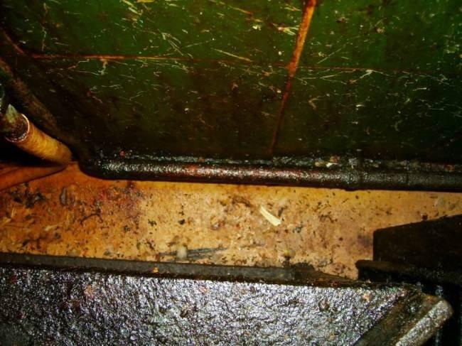 Είχε στο εστιατόριο του κατσαρίδες και ποντίκια αλλά δεν... (pics)