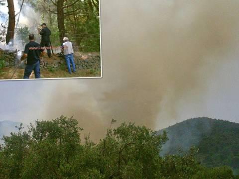 Μεγάλη πυρκαγιά στην Αγία Μαρίνα Μυτιλήνης (pics+vid)