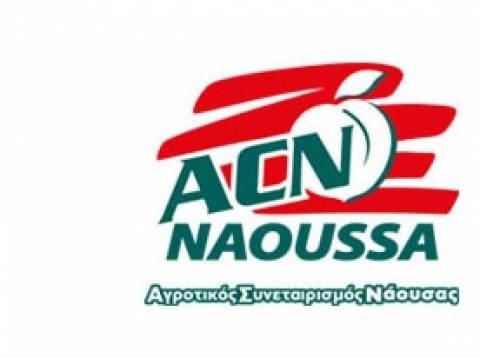 Νάουσα: Εξιχνιάστηκε ληστεία στον Αγροτικό Συνεταιρισμό