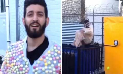 Ντύθηκε… Mentos και βούτηξε σε Coca Cola! (video)