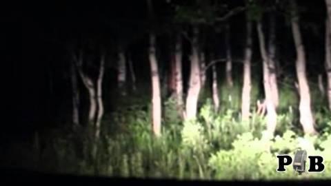 Ανατριχιαστικό βίντεο: Ήρθαν σε απόσταση αναπνοής από το μυθικό τέρας