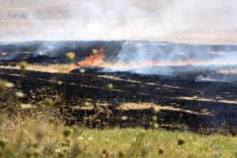 Μεγάλη φωτιά σε σιτοκαλαμιές στο Νεοχωράκι Αλμυρού