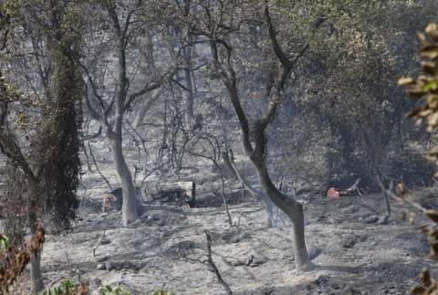 Κόρινθος: Κάηκαν δύο σπίτια - Ένας τραυματίας πυροσβέστης (pics&vid)