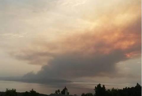 Μαλεσίνα: Εικόνες από τη μεγάλη πυρκαγιά που είναι σε εξέλιξη