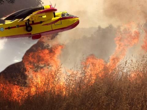 Συναγερμός για εκδήλωση νέων πυρκαγιών σήμερα