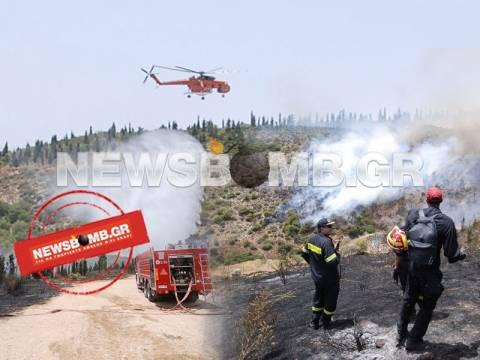Σε εξέλιξη φωτιά στο Καματερό (pics&vid)