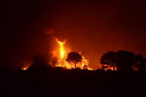 Σε επτά σημεία οι φωτιές στους νομούς Λάρισας και Καρδίτσας