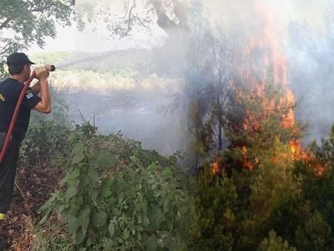 Μάχη με τις φλόγες για 3η μέρα στη Μαλεσίνα - 46 φωτιές σε ένα 24ωρο
