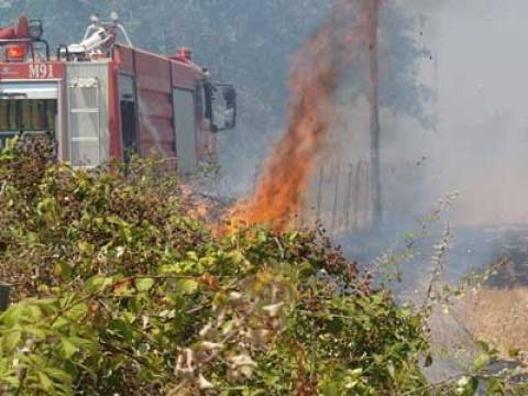 Υπό έλεγχο η πυρκαγιά στην Παιανία