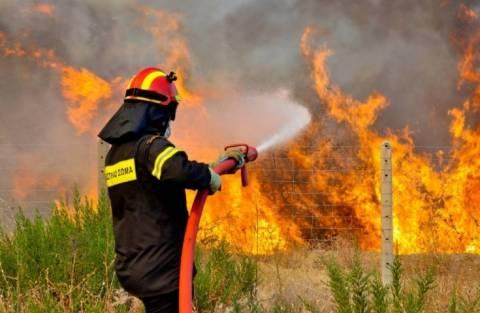 Κορινθία: Πυρκαγιά και στους Αγίους Θεοδώρους