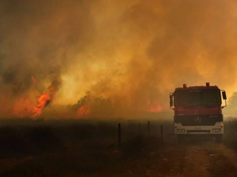 Μεγάλη φωτιά στη Μάνη – Εκκενώθηκε χωριό