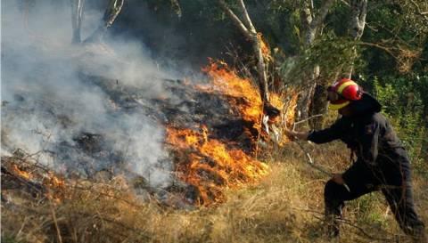 Σε ύφεση οι φωτιές σε Μάνη και Κορινθία