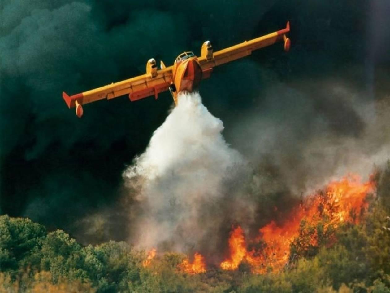 Εύβοια: Μεγάλη φωτιά στα Πολιτικά
