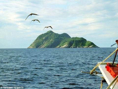 Σε αυτό το νησί ζει απομονωμένο το πιο επικίνδυνο φίδι του πλανήτη